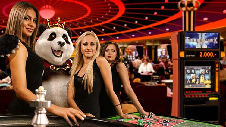 Royal Panda stands out in providing enhanced live casino experience